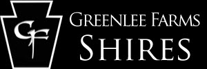Greenlee Farms Shires